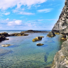 secret-rock-pools-activity-manly-BOARDRIDER-BACKPACKER-WORKING-HOSTEL-CHEAP-ACCOMMODATION-COUPLE-ROOM-MANLY